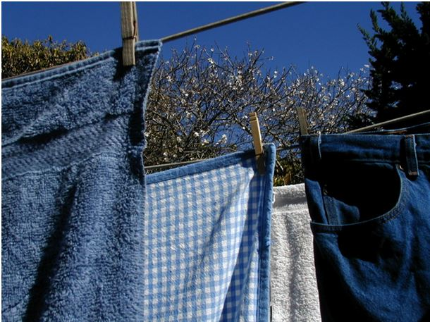 Clothesline, photography by Laura Shafer
